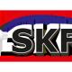skf-logo-tafeltennisver_2018 portfolio